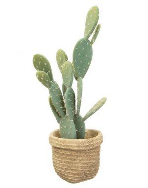 Sierra Cement Basket Planter