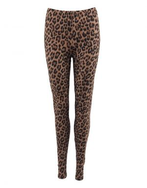 Black Colour Lynn Leggings in Leopard Print