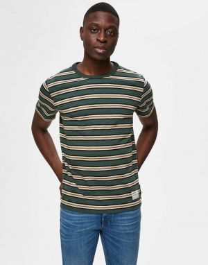 Selected Homme Carl Stripe T-Shirt in Sycamore