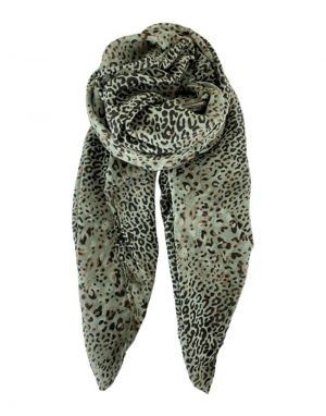 Black Colour Lily Leo Scarf in Olive